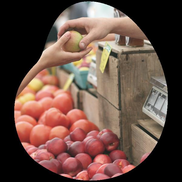 marchés de Vendée vente de pommes et autres fruits