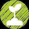 plant pommier nature bio